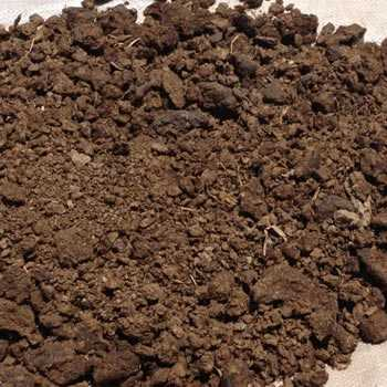 Cow Dung Fertilizer