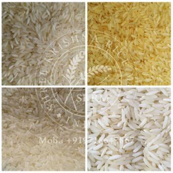 PR11 Non Basmati Rice