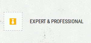 Expert & Professional