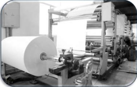 Paper & Pulp Industry