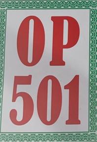 501 Iran