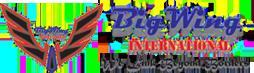 BigWing International