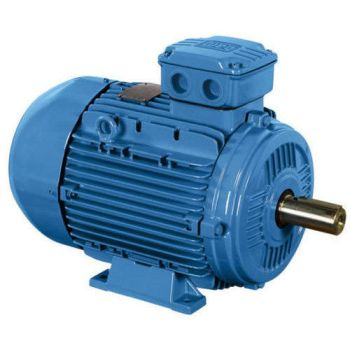 Electrical AC Motor