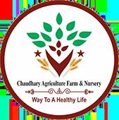 Choudhary Agriculture Farm & Nursery
