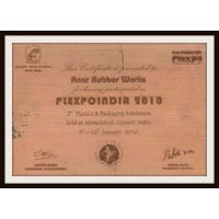 Certificate of Plexpoindia 2010