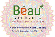 Xebec India Tours and Exports Pvt. Ltd.