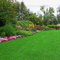 Landscaping Works 1