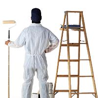 White Wash Painting/ Painter