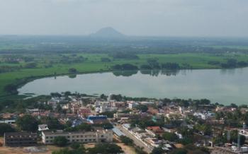 Palani View