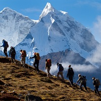 Trek Tours