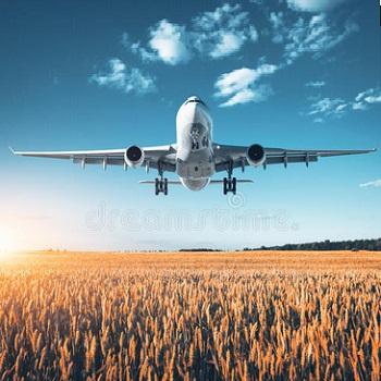 Flight Booking in Faridabad
