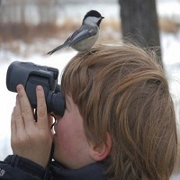 Bird Watching Tour