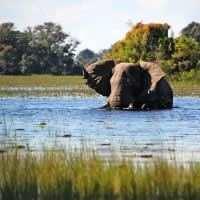 Wildlife and Nature Tour