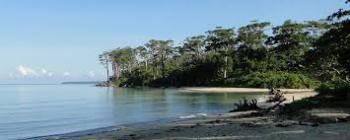 Ramnagar Beach and Pathi Level Beach