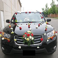 Wedding Car Rental in Vasant Kunj