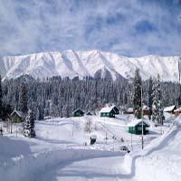 Kalpa Sangla Tour,Travel to Kalpa Sangla,Kalpa Sangla Tour Packages,Sightseeing Tour to Kalpa Sangla