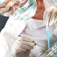 Doctors Placement