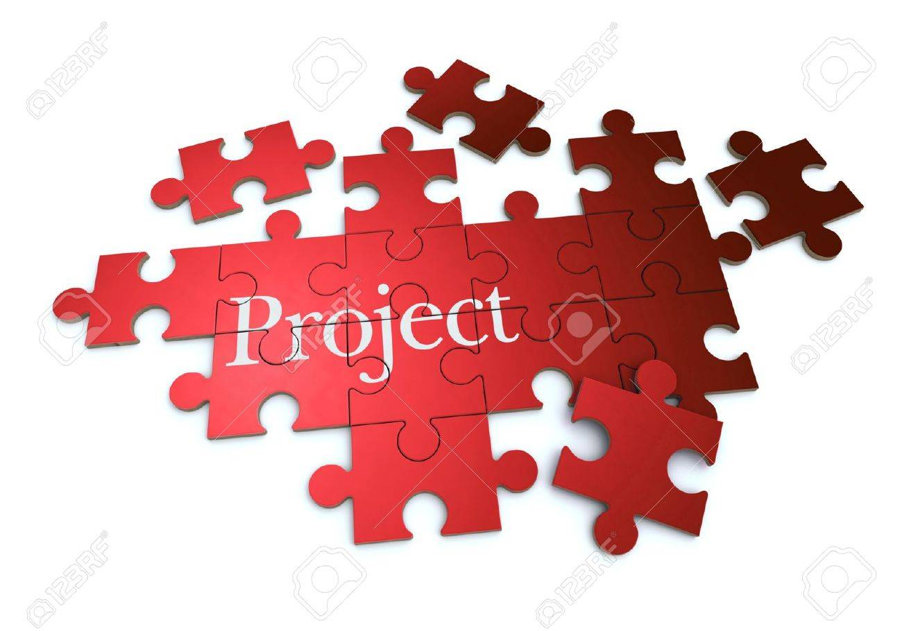 Projects Executed