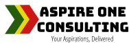 Aspire One Consulting