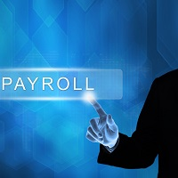 HR & Payroll Software