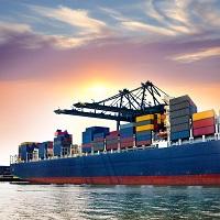 Export/ Import IT/ ITES