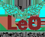 Leo Consultant