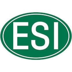 ESI Consultancy