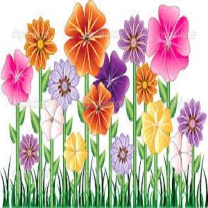 Garden & Lawn Maintenance Services